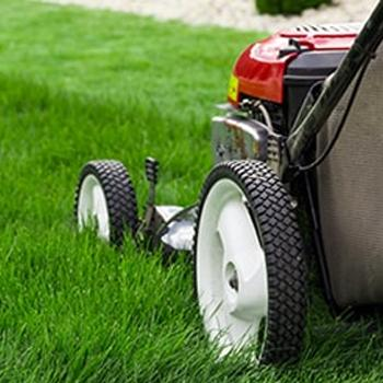 Golf Course Turf Care Equipment